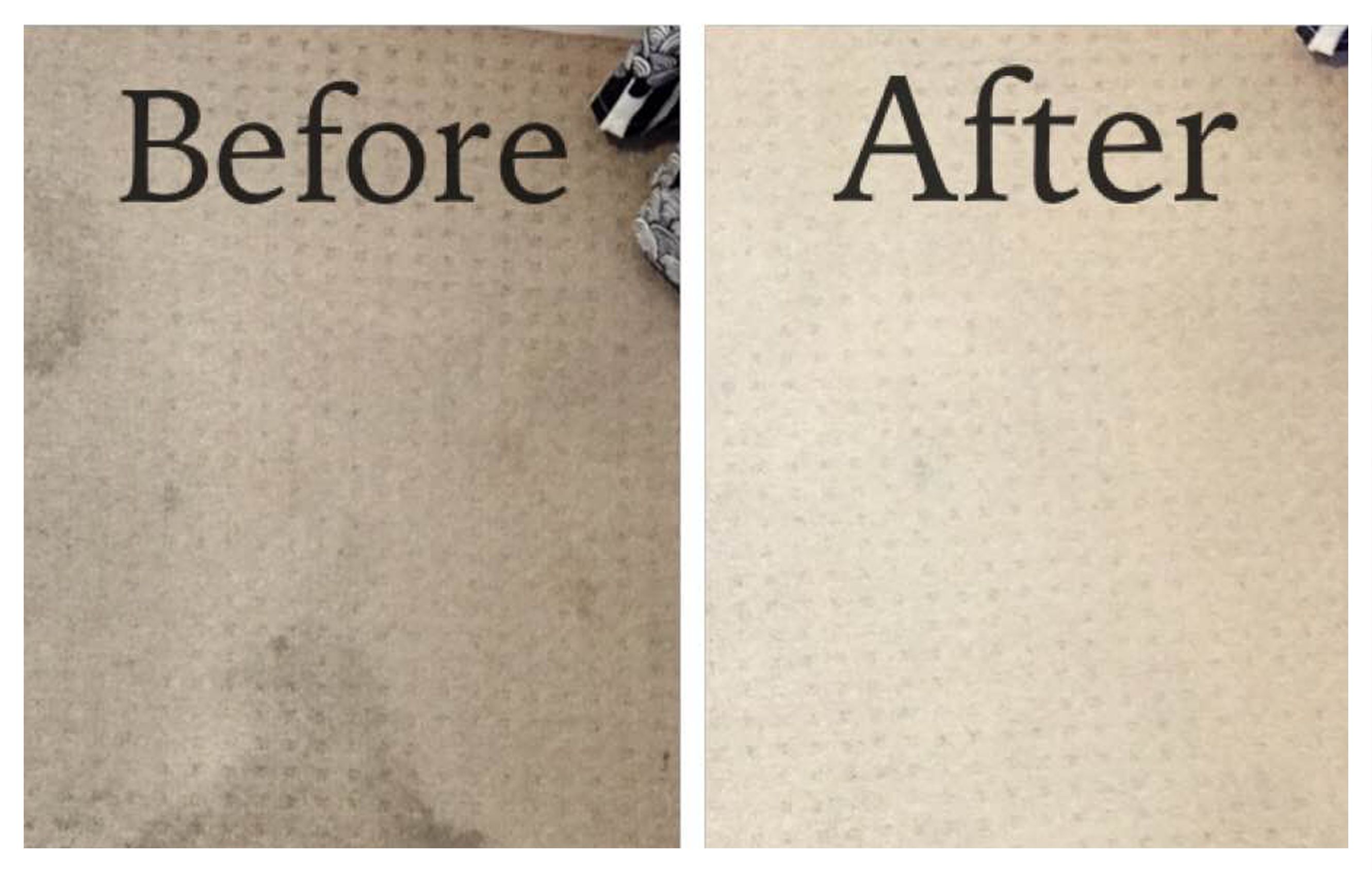 Stains Removed during Move Out Cleaning in Sydney